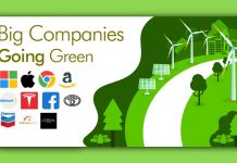 Big Companies Going Green