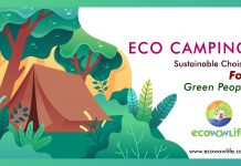 Eco Camping- Guide of Sustainable camping