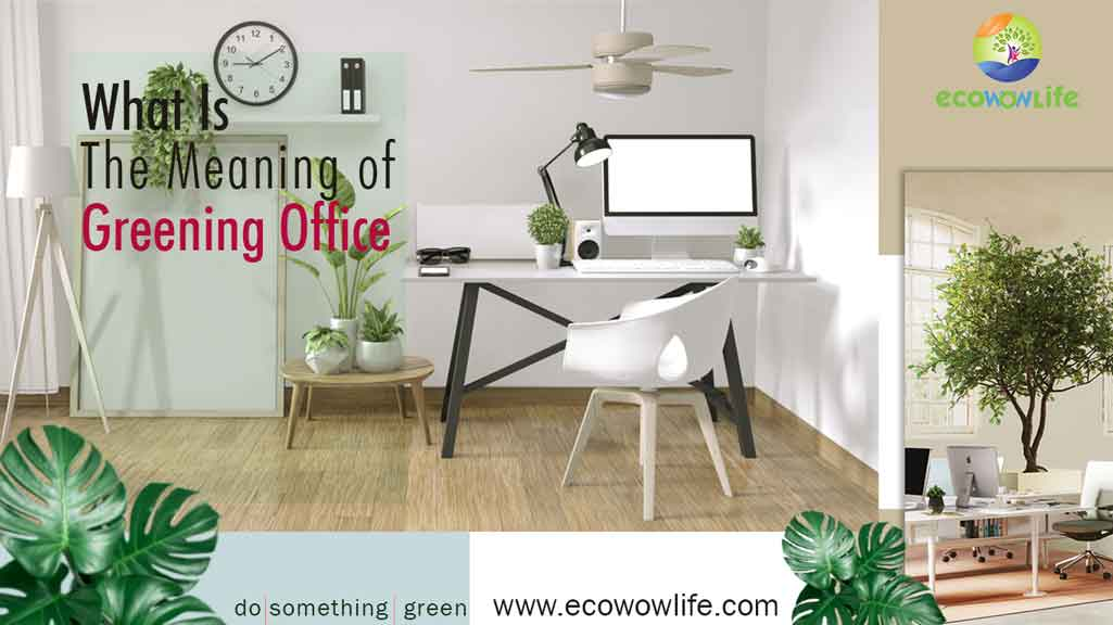 What is Greening Office Meant By