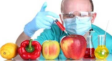 Neoliberalism and The GMO: the dark side of organic industries