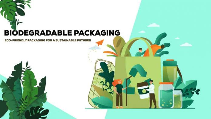 Definitive Overview of Biodegradable Packaging
