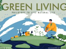 Green-Living-Philosophy-To-Live-Natural-Life
