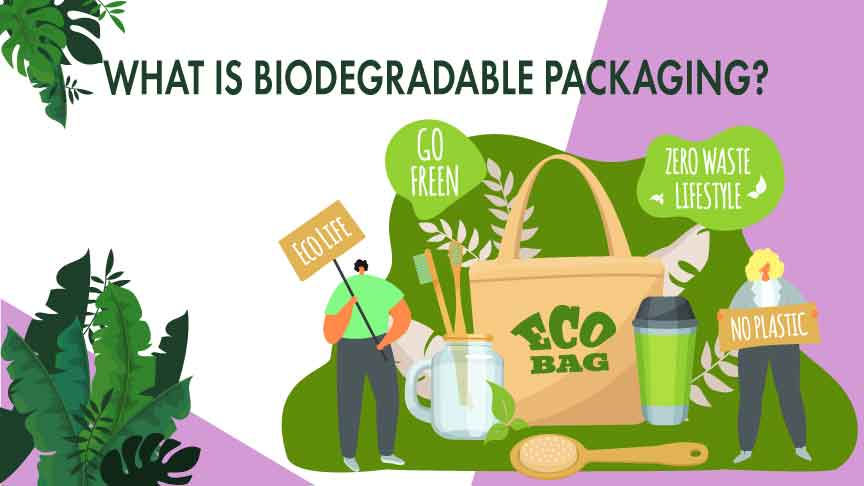 What is Biodegradable Packaging