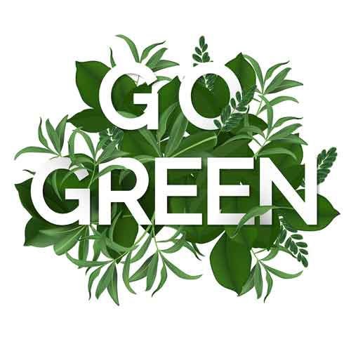 What is the meaning of Go Green