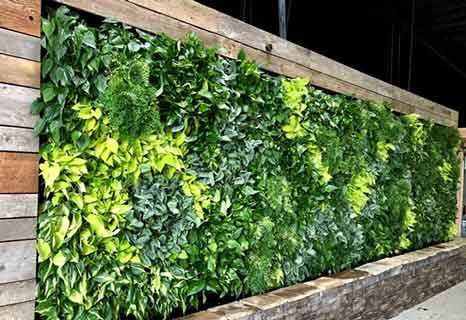 Why Green Living Matter in 2021? The Ultimate Guide Of Green Lifestyle!!